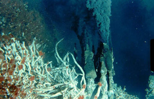 Black Smoker Hydrothermal Vent (Image Courtesy University of Victoria)