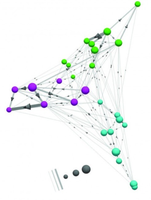 The connectome module as a 3D graph. Cell types with stronger connections are positioned closer to each other, using an algorithm. Three spatially segregated groups are observed that closely match the pathways identified through clustering (colouring of spheres). The dominant direction of signal flow is oriented into the page.