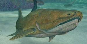 Entelognathus: The Fish with the First Modern Face